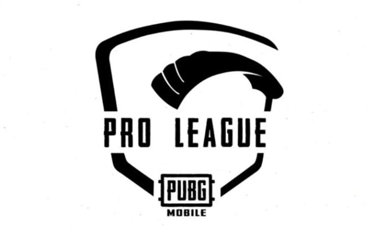 Xuất hiện giải đấu PUBG Mobile cho nữ ở khu vực Đông Nam Á, có cả game thủ Việt Nam tham dự