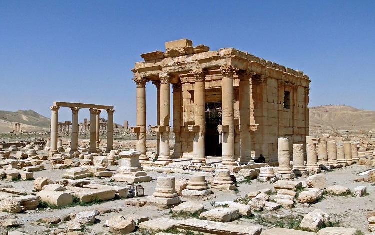 Palmyran sức mạnh hủy diệt của Lạc Đà trong AoE(Phần 1)