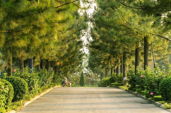 [AoE]Đan Phượng: Mảnh đất sinh ra ''thần đồng AoE Việt'' có gì đặc biệt?