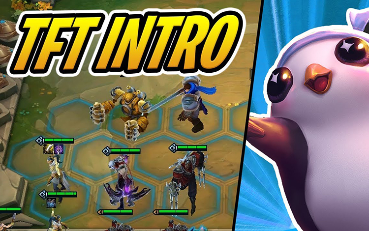 """Riot Cactopus: """"AutoChess là nguồn cảm hứng tạo ra Teamfight Tactics"""""""